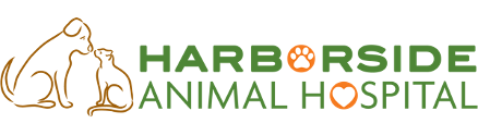 Harborside Animal Hospital